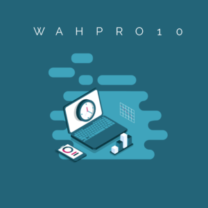 WAH Pro 10